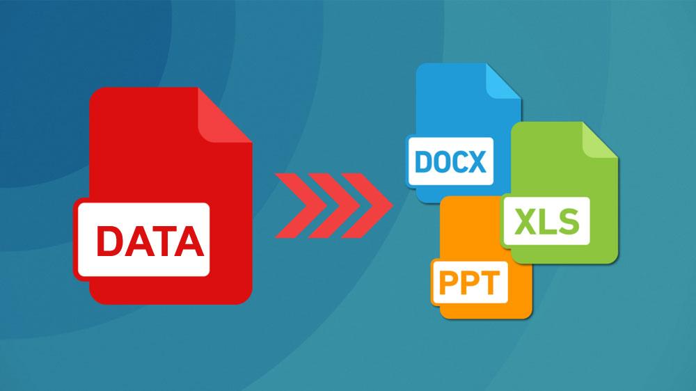 Outsource Data Conversion - Shri Data Entry Services India